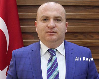 Ali Kaya